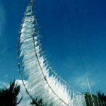1987からシルクオーガンジーに竹の小枝を合わせる